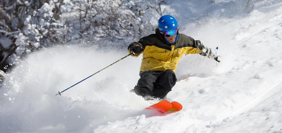 パウダーゾーン、ツリーランコースも楽しい|タングラムスキーサーカス