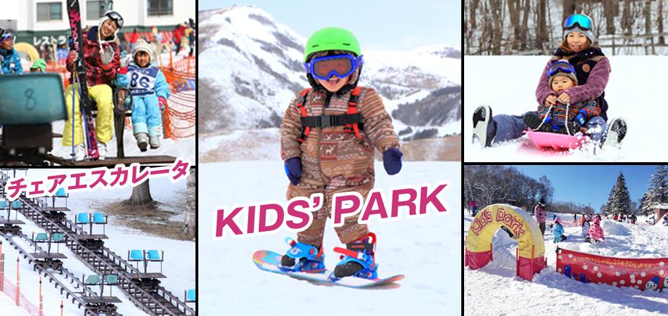 充実したスキー&スノーボードスクール|白樺湖ロイヤルヒル