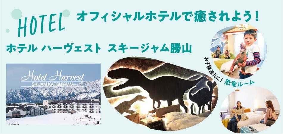 アフタースキーはリゾートセンター内の法恩寺温泉「ささゆり」で!|スキージャム勝山