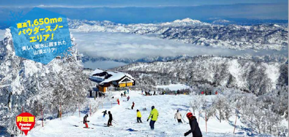 良質の天然雪 野沢温泉スキー場