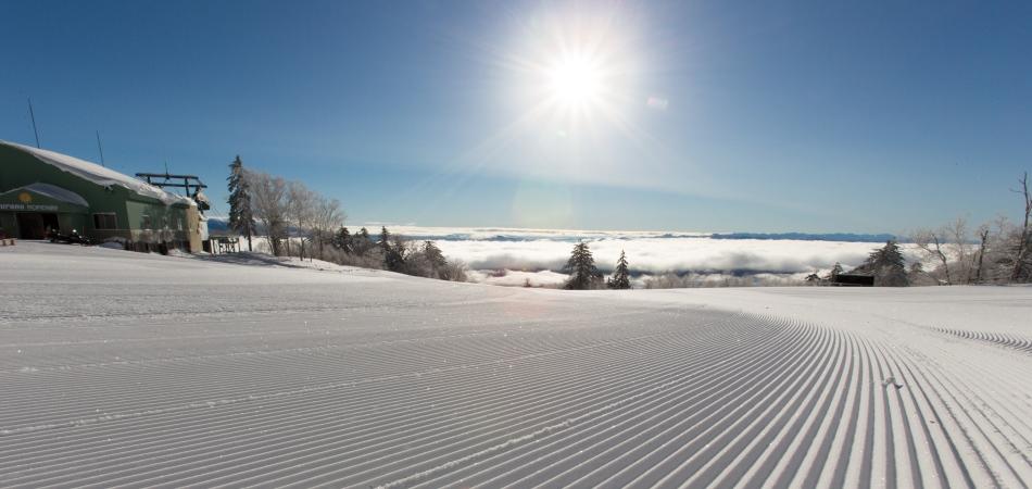 富良野スキー場ファーストトラック 富良野スキー場