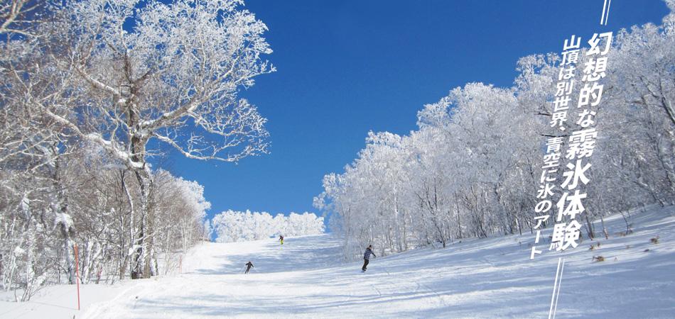 3,319mは北海道最長のゴンドラ! 滑らなくても楽しめます。|函館七飯スノーパーク