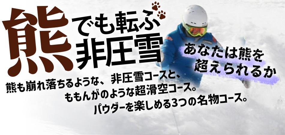 2つの完全非圧雪コース「熊つっとす」と「熊ぼっこす」。さらに新コース「ももんが」も登場!|水上高原スキーリゾート