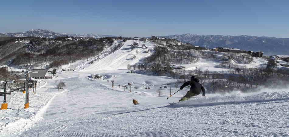 100%天然雪で楽しむバリエーション豊かな29コースの本格スノーリゾート 斑尾高原スキー場