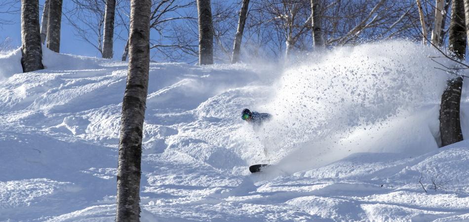 豊富な積雪と極上のパウダースノーで味わう非圧雪コース|斑尾高原スキー場