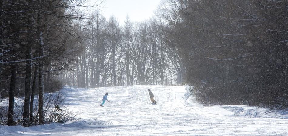 斑尾高原スキー場はゲレンデデビューを応援します! 斑尾高原スキー場