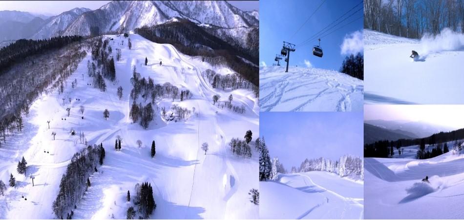 RIDE ON THE SNOW WAVE!|スノーウェーブパーク白鳥高原