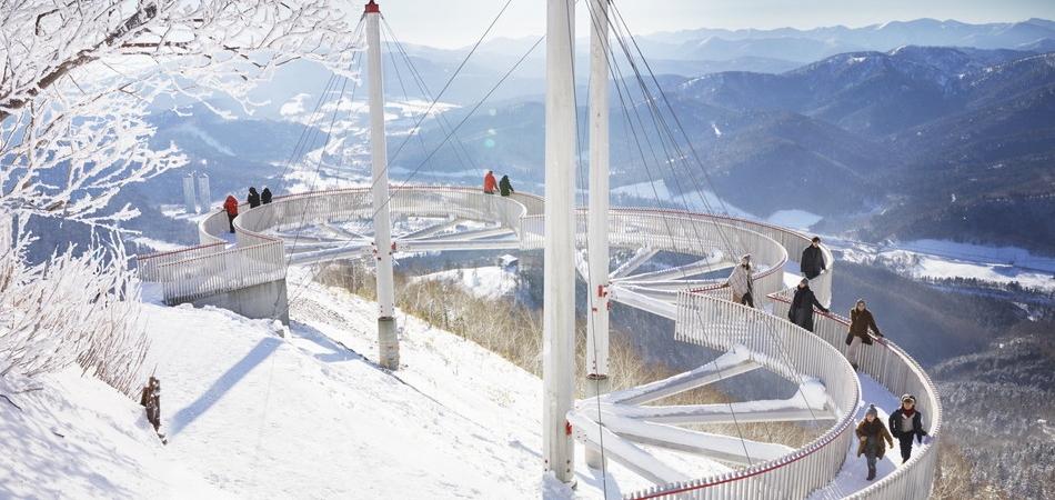 氷と大自然が織りなす、神秘的な景色が広がる「霧氷テラス」|星野リゾート トマム スキー場