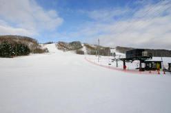 羽幌町民スキー場 びゅー
