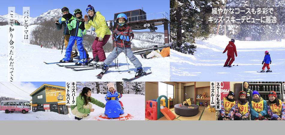 NIGHT TIME | 毎日営業のくまどーナイター、17時から22時まで営業|赤倉温泉スキー場