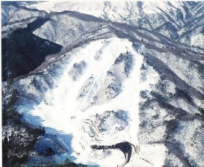 ホワイトバレー松原