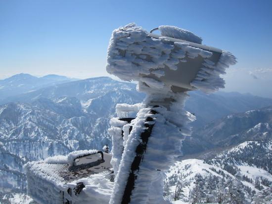 横手山・渋エリア|志賀高原 熊の湯スキー場のクチコミ画像