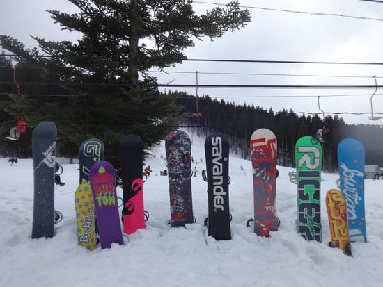 お気に入りのスキー場