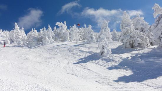 樹氷がよかった|蔵王温泉スキー場のクチコミ画像