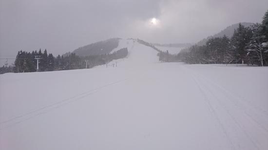パウダー貸し切り状態|大鰐温泉スキー場のクチコミ画像2