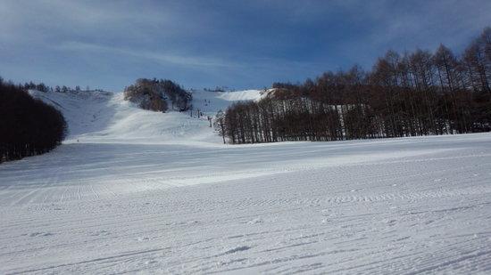 しらかば2in1スキー場のフォトギャラリー4