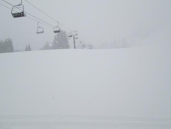 大雪でした|白馬さのさかスキー場のクチコミ画像