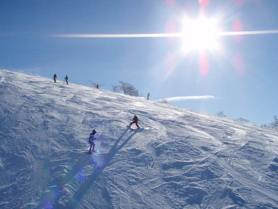 ジャム勝の最高のロケーション|スキージャム勝山のクチコミ画像