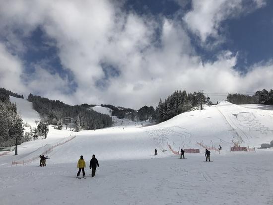 まさかの新雪|ウイングヒルズ白鳥リゾートのクチコミ画像