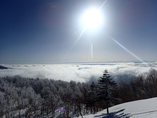 志賀高原 焼額山スキー場のフォトギャラリー1