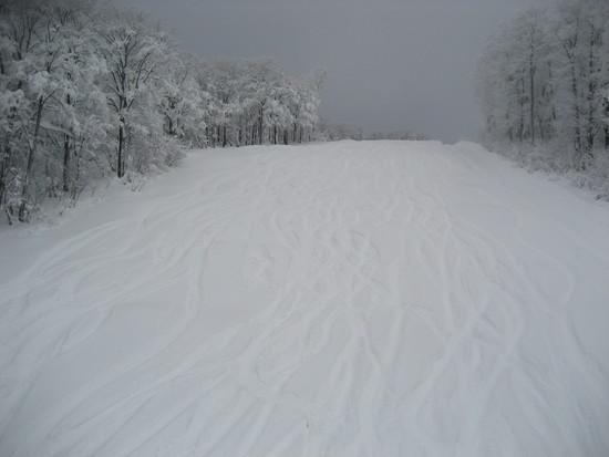 今年はまだ雪は少ないけどいい雪|阿仁スキー場のクチコミ画像