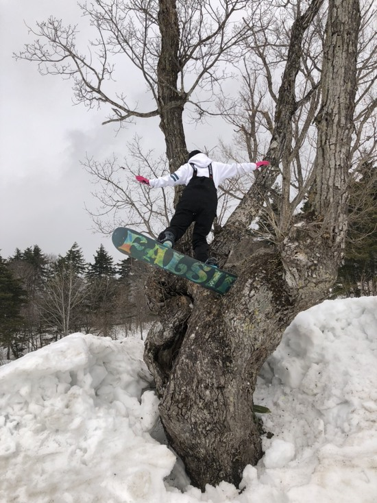 ユニークキッカー|会津高原南郷スキー場のクチコミ画像