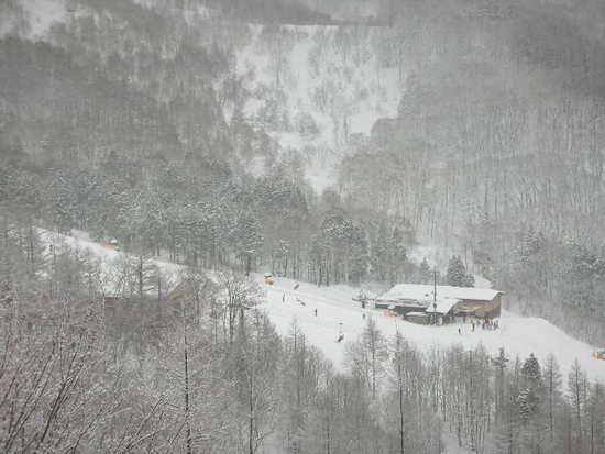 初めての箕輪|箕輪スキー場のクチコミ画像3