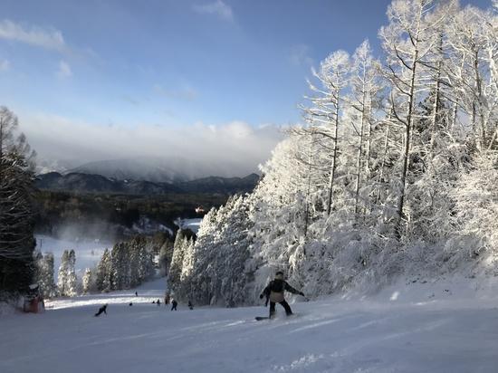 雪降ったはずなのに・・・ 鷲ヶ岳スキー場のクチコミ画像3