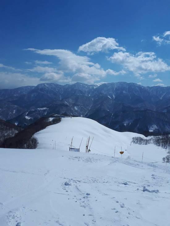 恵みの雪!!|白馬コルチナスキー場のクチコミ画像