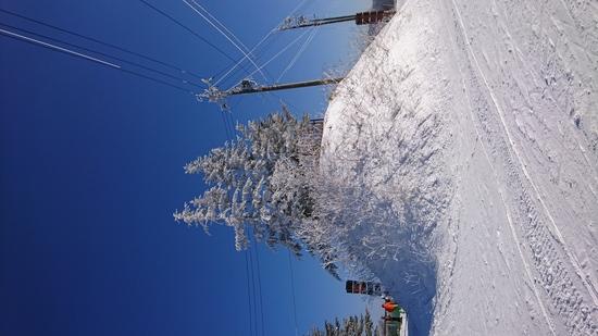 景色キレイ|菅平高原スノーリゾートのクチコミ画像3