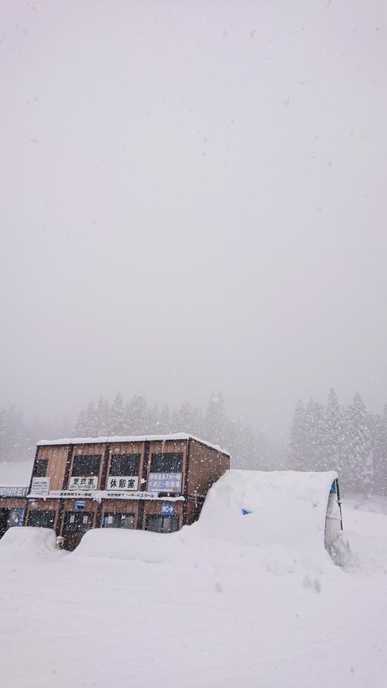 2020信州ツアー 第2章始まる?(VOL.1)|赤倉温泉スキー場のクチコミ画像