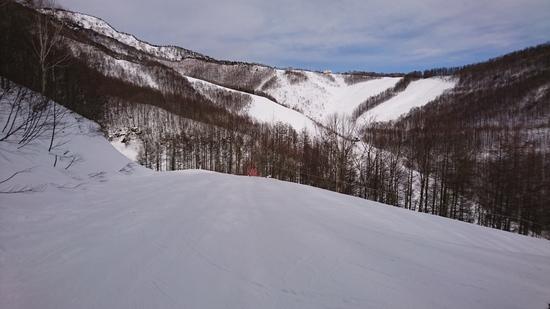 斜度が最高|オグナほたかスキー場のクチコミ画像2