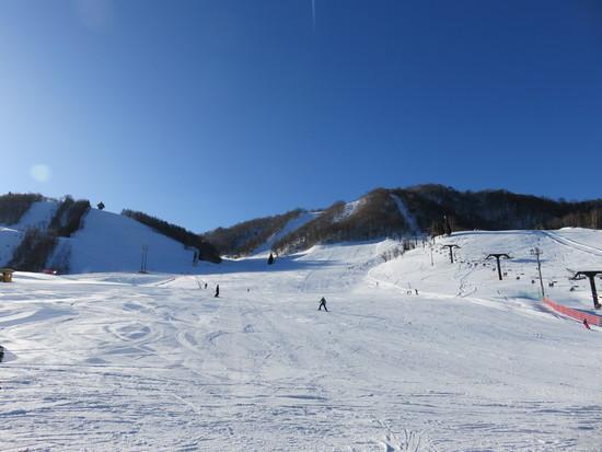 スキーヤー天国|飛騨ほおのき平スキー場のクチコミ画像