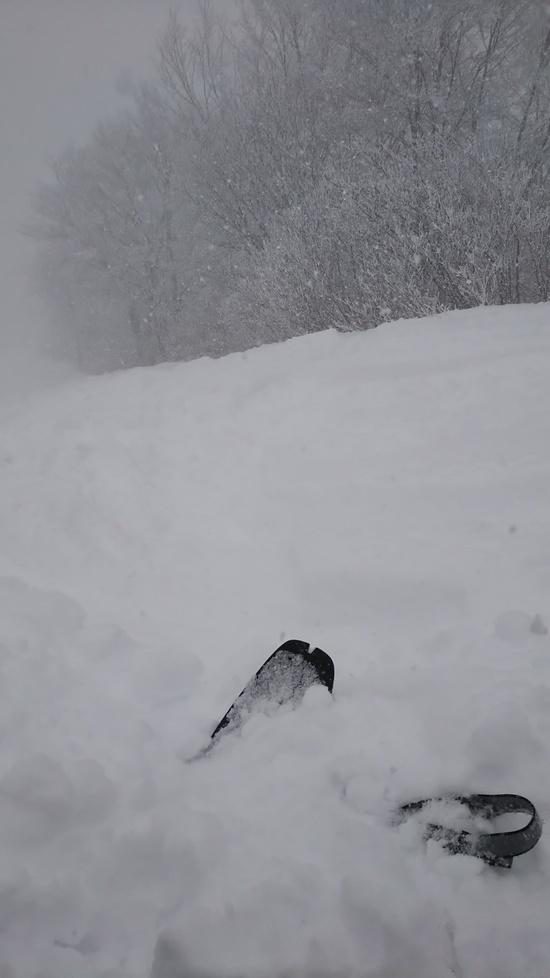 ふかふか膝上パウダー 斑尾高原スキー場のクチコミ画像2