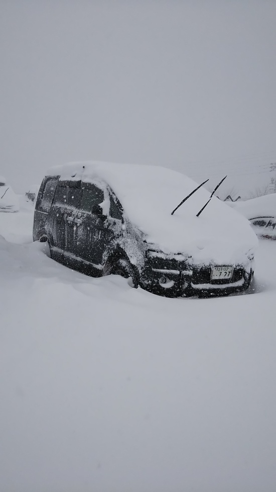 ふかふか膝上パウダー 斑尾高原スキー場のクチコミ画像3