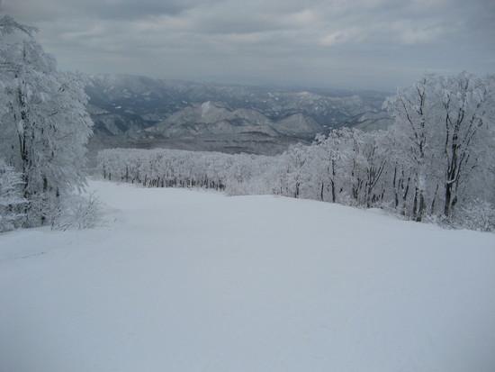 雪質Good!|阿仁スキー場のクチコミ画像