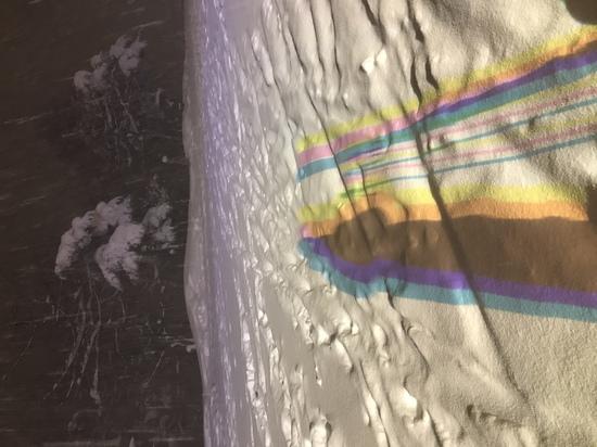Powww day|斑尾高原スキー場のクチコミ画像