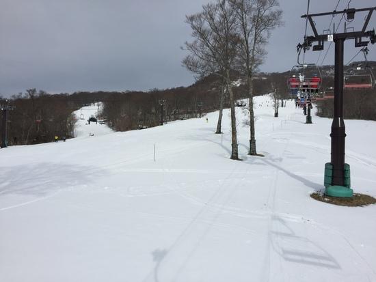 雪まあまあ|たんばらスキーパークのクチコミ画像