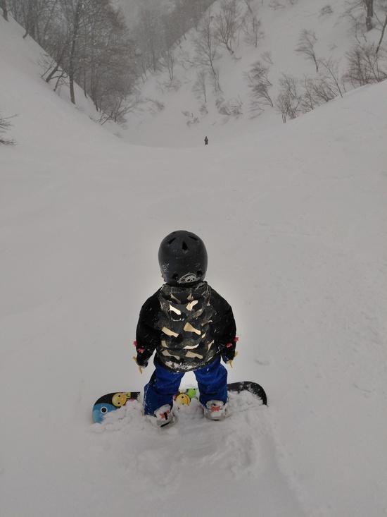 谷川岳天神平スキー場のフォトギャラリー3