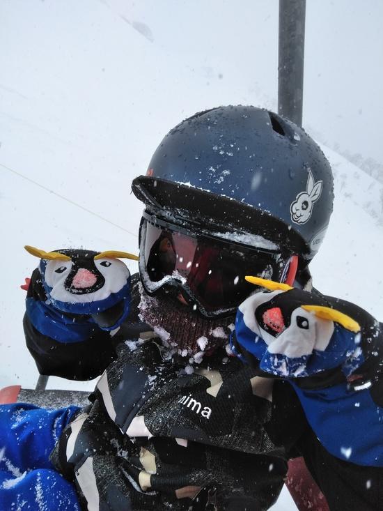 下山コース|谷川岳天神平スキー場のクチコミ画像2