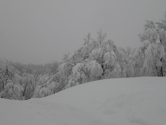混んでいてもサイコー|上越国際スキー場のクチコミ画像