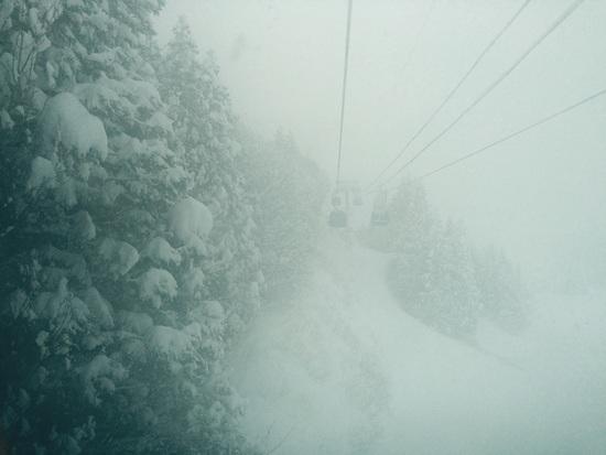 疲れるくらい|苗場スキー場のクチコミ画像