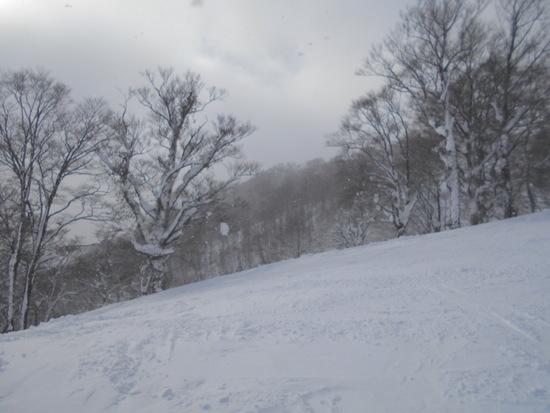 ヘブンスそのはら SNOW WORLDのフォトギャラリー6