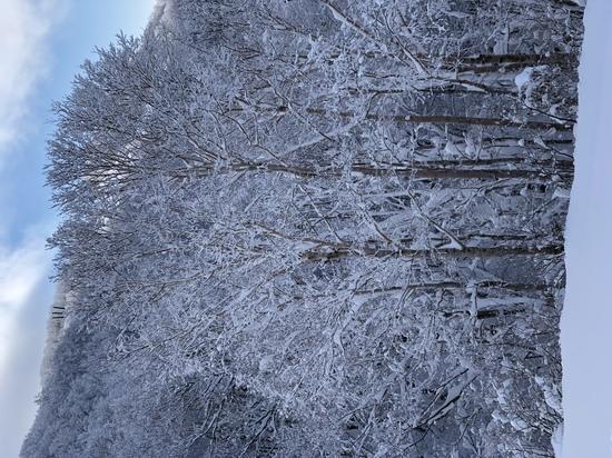 とても良い|スキージャム勝山のクチコミ画像