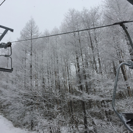 サンメドウズ清里スキー場のフォトギャラリー3