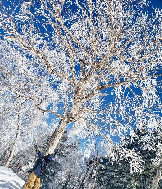 万座温泉スキー場のフォトギャラリー5