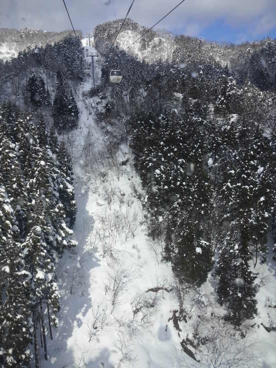 雪はふかふか、ガス大発生。|おじろスキー場のクチコミ画像3