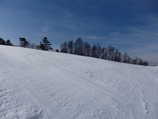 浅間山の雪がかなり溶けていました|軽井沢スノーパークのクチコミ画像2