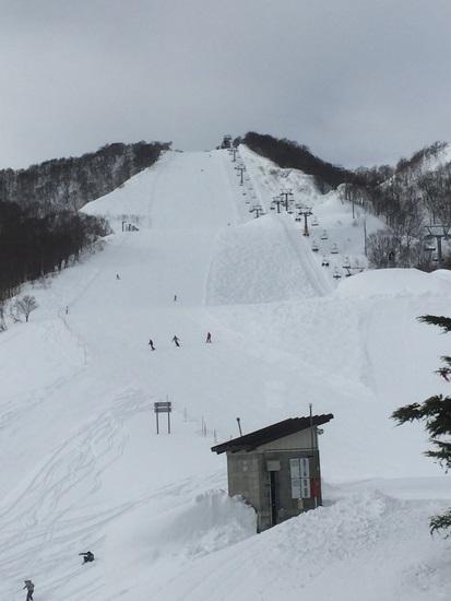 コースコンディション最高|石打丸山スキー場のクチコミ画像