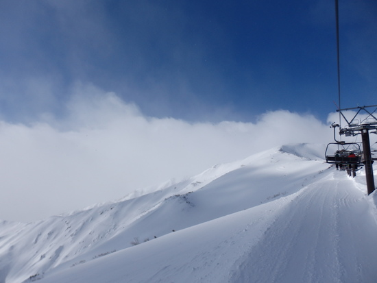 パウダーが最高でした|白馬八方尾根スキー場のクチコミ画像